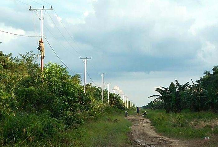 Pulau Rupat adalah sebuah pulau di Kabupaten Bengkalis, Provinsi Riau. Pulau ini memiliki luas lebih kurang 1.500 km2. Pool/PLN Wilayah Riau dan Kepri.