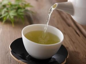 Mau Tahu Soal Teh Hijau? Segera Gabung di Kelas Green Tea Xperience Ini