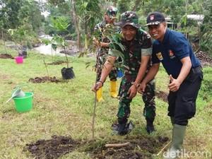 Puluhan Pelestari Hutan Bersatu Hijaukan Lahan Kritis Gunung Bromo