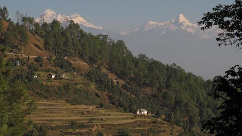 Adalah Desa Binsar yang terletak di Uttarakhand, India Utara. Lokasinya memang terletak persis di bawah kaki Pegunungan Himalaya (Village Ways/Facebook)