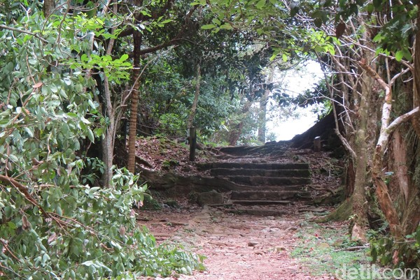 Kita harus treking sedikit membelah hutan lebat. Di ujungnya ada gazebo untuk melihat pemandangan (Fitraya/detikTravel)