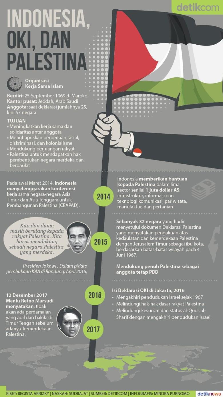 Jejak Indonesia dan OKI Memperjuangkan Hak Palestina