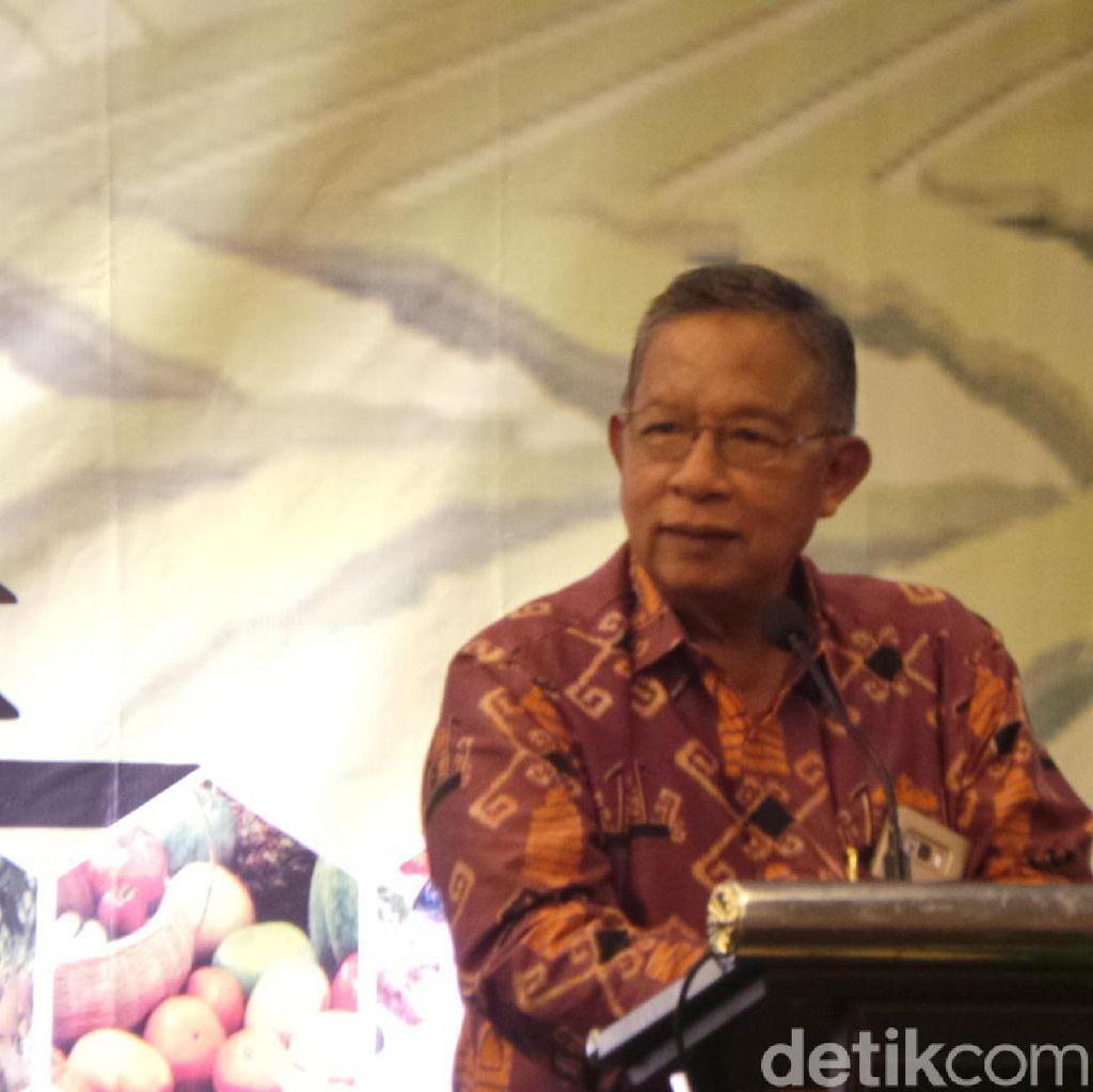 Rizal Ramli Lapor Impor Pangan ke KPK, Darmin: Korupsinya di Mana?