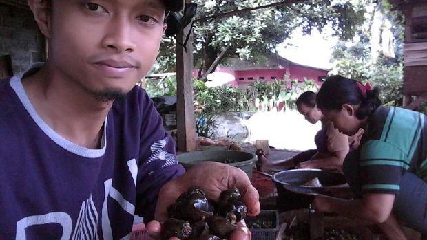 Bisnis Keong Sawah, Pria Ini Raup Omzet Rp 18 Juta/Bulan