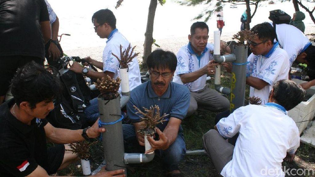 100 Terumbu Karang Ditanam di Pantai Grand Watudodol
