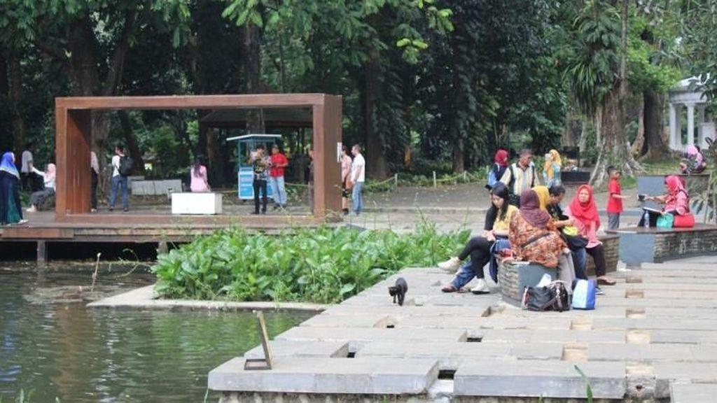 Refreshing Sejenak di Kebun Raya Bogor