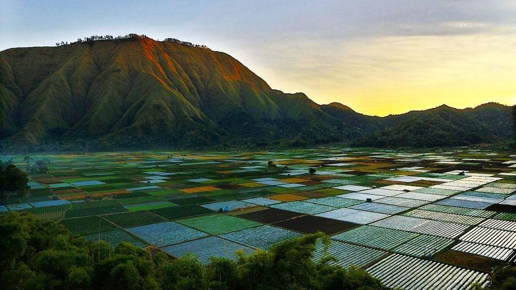 Mengenal Desa Adat Beleq, Asal-usul Sembalun Lombok