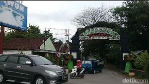Kisah di Balik Ribuan Bulus di Wisata Sendang Tawun Ngawi
