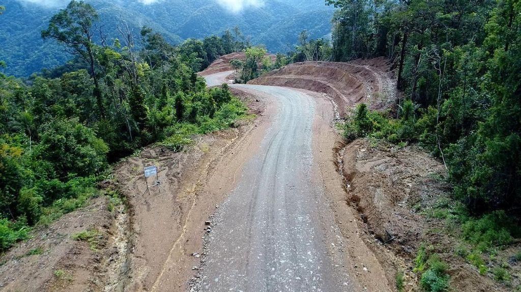 Wow, Jokowi Bangun Jalan Meliuk Tembus Belantara Papua