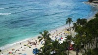 Sungguh Malang, 7 Turis di Hawaii Luka-luka Tertimpa Pohon Tumbang
