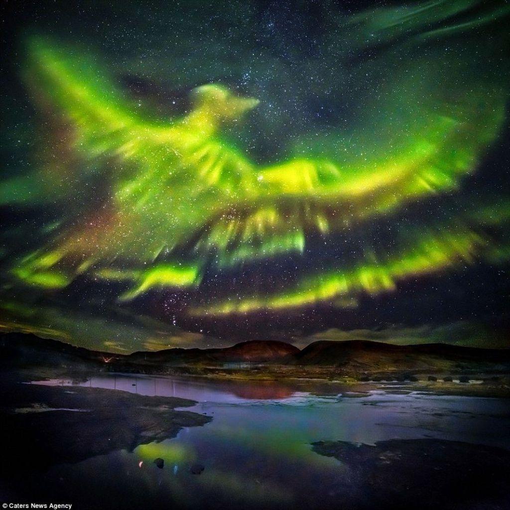 Cahaya auora di Islandiayang mirip dengan burungPhoenix. (Foto: Brightside/Hallgrimur P Helgason)