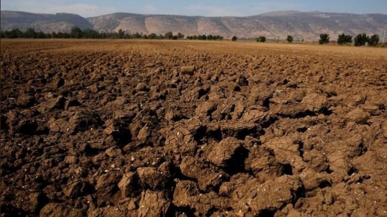 Foto: Israel Kekeringan, AS Dilanda Cuaca Ekstrem