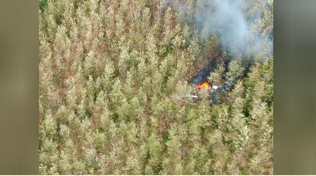 Pesawat Cessna jatuh di Kosta RIka, tewaskan 12 orang (Foto: Reuters).