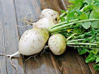10 Sayuran Warna Putih Ini Bisa Jadi Menu Sehat Anda (2)