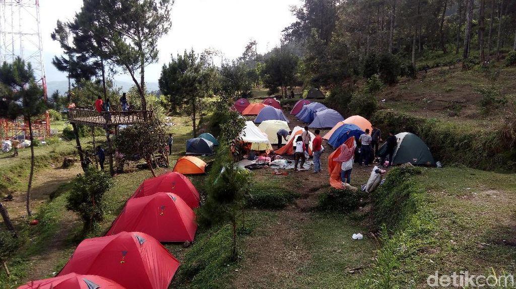 Ramai Banget! Kemping Ceria di Gunung Ungaran Semarang