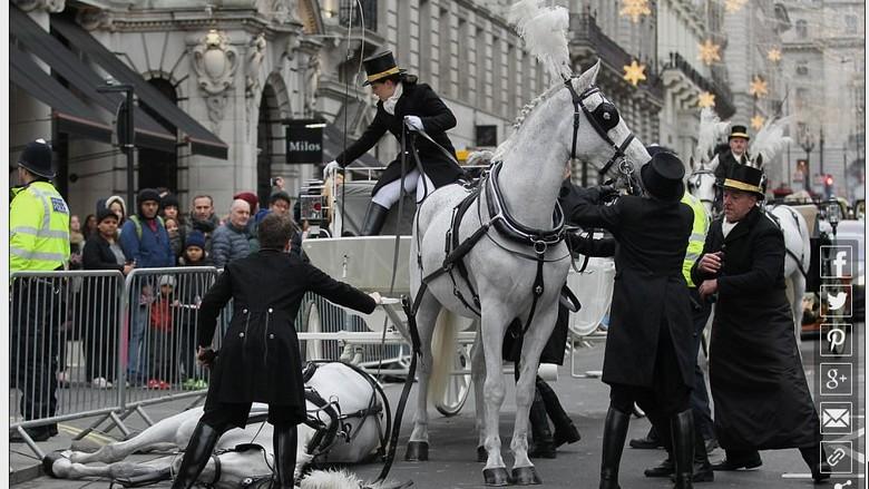 Kuda yang mendadak pingsan di parade Tahun Baru London (dok DailyMail)