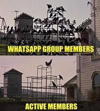 Meme Kocak Serba Serbi Grup Whatsapp
