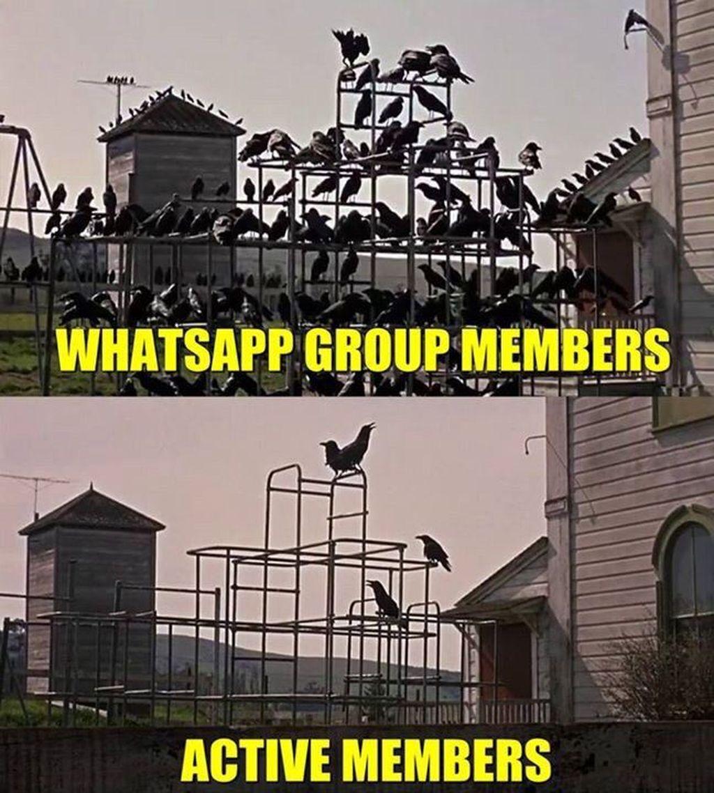 Meski banyak anggotanya, grup WhatsApp seringkali hanya didominasi user tertentu yang paling berisik. Foto: istimewa