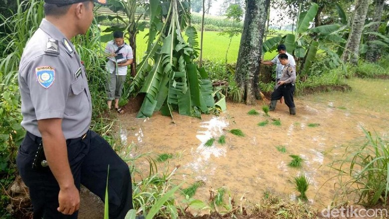 Lima Petani Tersambar Petir di Jepara, Satu Tewas