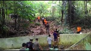 Cerita Angkernya Hutan Soppeng yang Ditunggui Wanita Cantik