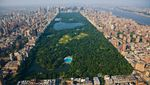 Foto: Ini Perbandingan Kondisi Central Park dan Monas