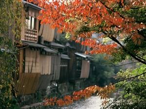 5 Destinasi Terbaik di Dunia Untuk Nikmati Musim Gugur
