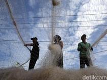 Sempat Dilarang, Cantrang Dibolehkan Lagi buat Tangkap Ikan