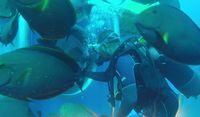 (Whale Submarine)
