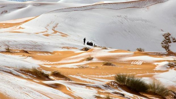 Faktanya, Gurun Sahara Berganti Iklim Tiap 20 Ribu Tahun