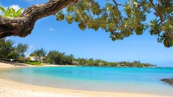 Pulau Mauritius menawarkan keindahan alam laut dan pantai yang rupawan. Dengan luas sekitar 2.000 an kilometer persegi, Pulau Mauritius menawarkan berbagai macam atraksi (Tourism Mauritius)