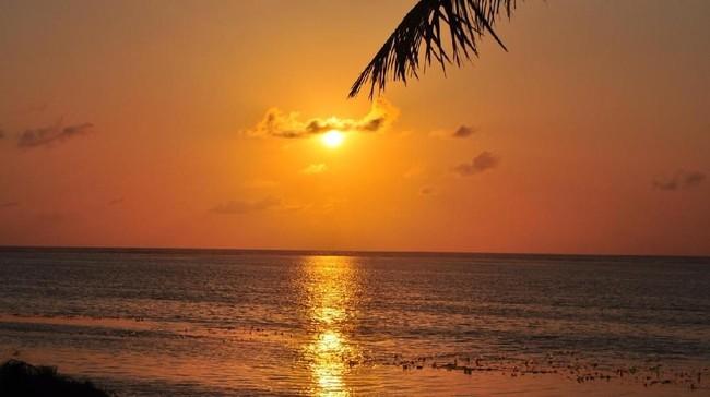 Heboh Pulau di Bintan Dijual Online