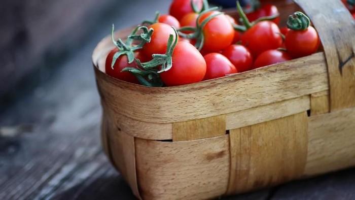 Manfaat tomat. Foto: Fox News/iStock