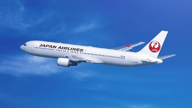 Ilustrasi pesawat Japan Airlines