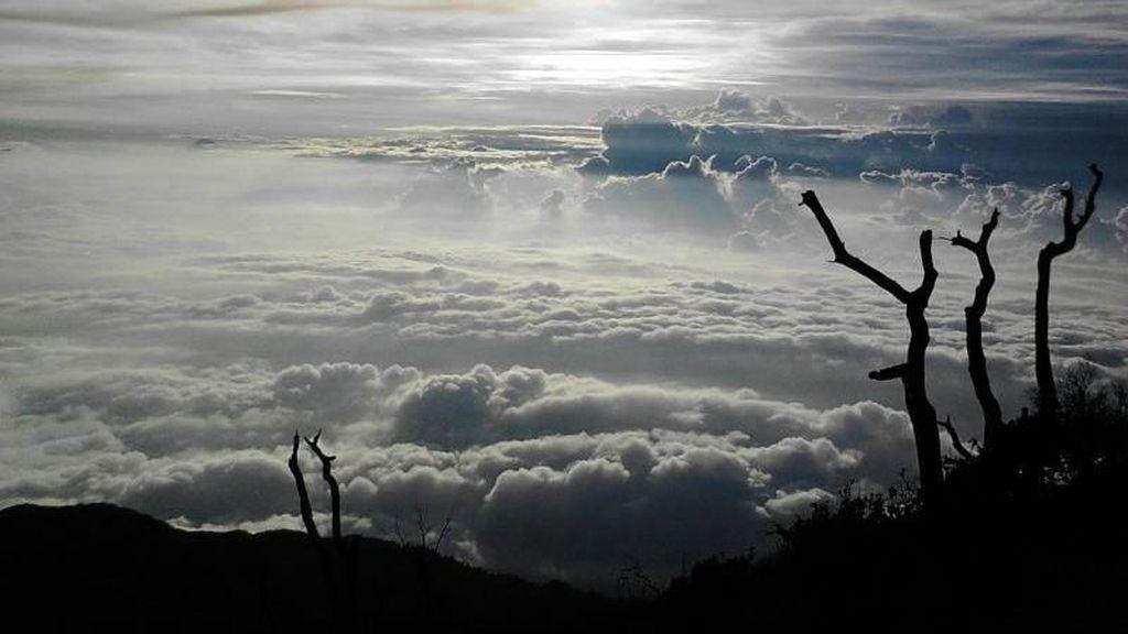 Potret pendakian ke Gunung Slamet
