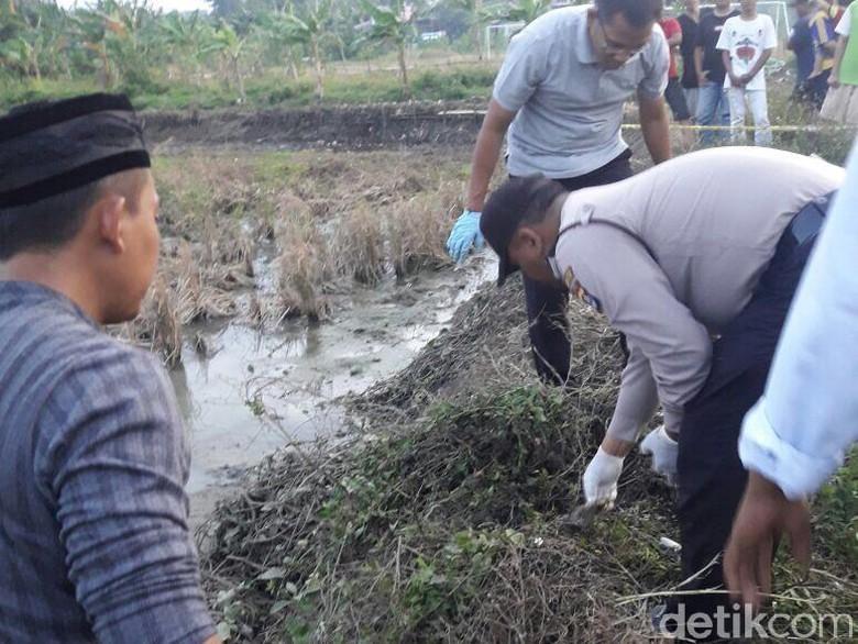 Polisi Selidiki Penemuan Kerangka Manusia di Persawahan di Tangerang