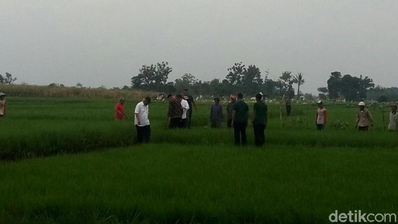 Foto: Sigapnya Jokowi Pegangi Ganjar yang Jatuh di Sawah