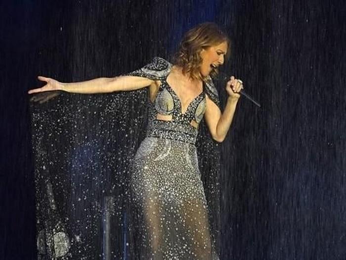 Celine Dion dari instagram.