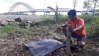 Awal tahun 2018 ini, publik kembali dikejutkan dengan temuan bangkai orangutan tanpa kepala yang mengambang di Sungai Barito, Kabupaten Buntok, Kalimantan Tengah. (Foto: dok. Centre for Orangutan Protection)