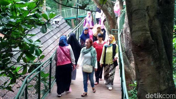 Tangkuban Perahu Erupsi, Ini 5 Destinasi Alternatif di Bandung