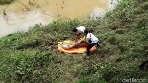 Mayat Pria dalam Karung Ditemukan di Pinggir Sungai Pekalongan