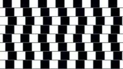 Ilusi optik terjadi ketika sinyal yang diterima mata dan disampaikan ke otak berbeda. Berikut ini adalah contoh-contohnya yang bisa bikin kamu berdecak kagum.