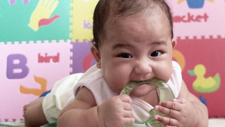 Ide Nama Bayi Laki-laki dari Bahasa Kroasia/ Foto: Dani Irawan