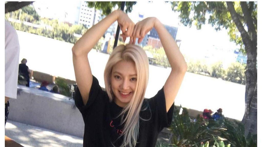Gebrakan Positif SONE Indonesia untuk Sambut Hyoyeon SNSD