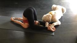 Miley Cyrus ternyata saat remaja memiliki tubuh gemuk. Untuk menurunkan berat badan dan membentuk tubuh, ia memilih yoga dan menerapkan diet vegan.