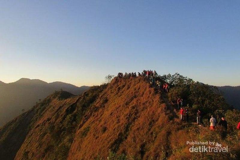 detikTravel akan membahas Gunung Puntang yang berada di Banjaran, Bandung Selatan, Jawa Barat. Inilah tempat di mana kopi paling mahal dan terbaik dicicipi oleh Presiden Jokowi (Adhan/detikTravel)