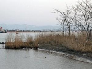 Hilang Sebulan, Balita Ditemukan Tewas di Tepi Sungai Fukui