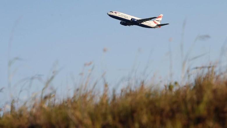Foto: Ilustrasi pesawat (Hannah McKay/Reuters)