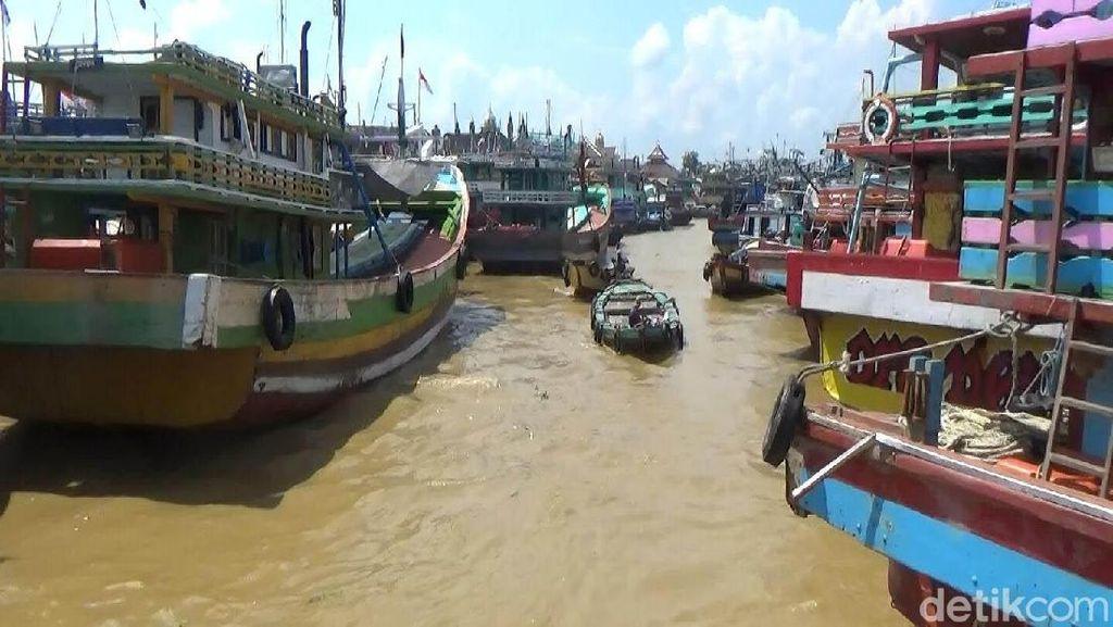 BPK: Larangan Cantrang Bisa Ganggu Ekonomi Sektor Perikanan
