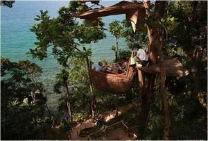 Mengintip 8 Restoran Unik di Dunia Bernuansa Hutan hingga Air Terjun