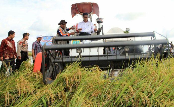 Mentan memulai panen Raya di wilayah Jawa Timur, Senin (22/1/2018). (Dok Kementerian Pertanian).